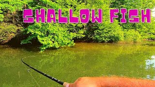 Fishing my Home Lake!!  Ocoee, TN