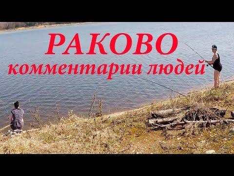 Рыбалка в Раково реальные отзывы 24.04.2019