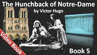 Book 05 - The Hunchback of Notre Dame Audiobook by Victor Hugo (Chs 1-2)