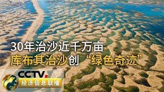 《经济信息联播》 20190803| CCTV财经