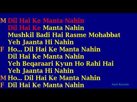 Dil Hai Ke Manta Nehin - Duet Hindi Full Karaoke with Lyrics