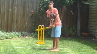 Backyard Cricket 2011