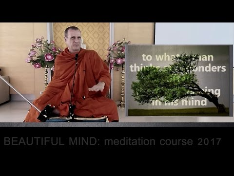 Beautiful Mind - Mindfulness Meditation Course week 4, with Pandit Bhikkhu