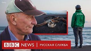 «Мы боимся за океан. С ним связана вся наша жизнь». Что произошло на Камчатке?