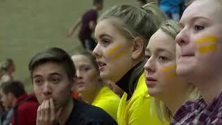 Volleyballturnering 2017