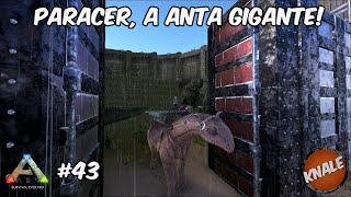 ARK Survival Evolved #43 Nova Atualização! Paraceratherium!