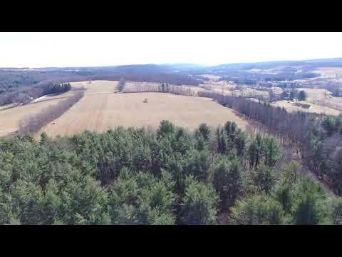 Otsego County NY 81 acres of Beautiful land
