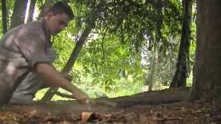 Finding a Large Underground Smoldering Fire