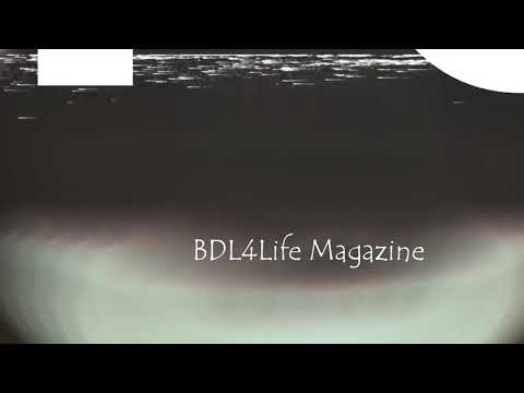 RealSpitTv at BDL4LIFE Magazines Top Indie Artist Showcase