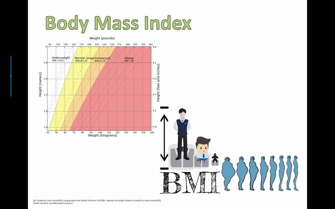 Body Mass Index (bmi) (ib Bio) (2015)