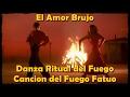 Miniature de la vidéo de la chanson El Amor Brujo: Canción Del Fuego Fatuo