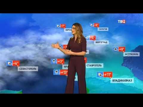Погода сегодня, завтра, видео прогноз погоды на 23.2.2019 в России и мире