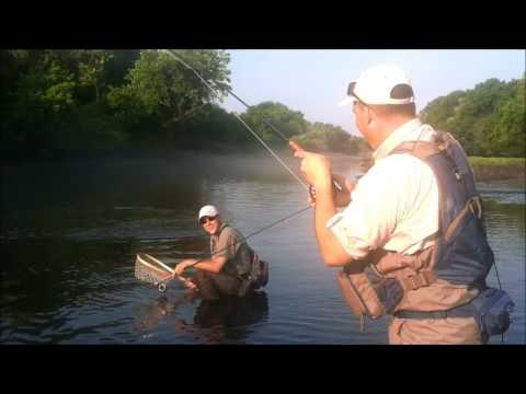 Fishing in gore ok doovi for Trout fishing illinois