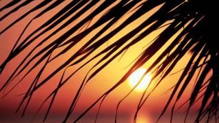 Gotye Ft. Kimbra - Somebody That I Used To Know (ENiGMA Dubz Remix) |FREE|