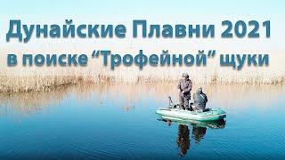 Рыбалка на Щуку 2021 \Дикие Дунайские плавни\