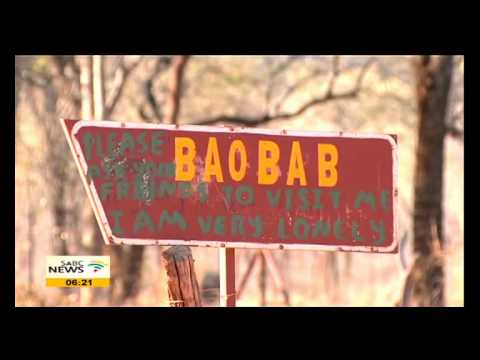 The Great Limpopo Transfrontier Park Route‎