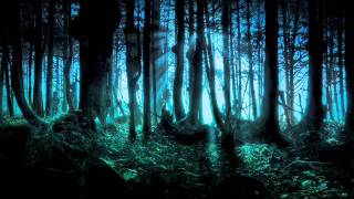 Download Frederic Chopin - Mysterious Forest Mp3 and Videos