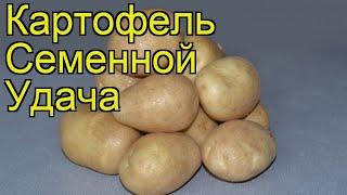 видео Купить Картофель с/м в интернет-магазине с доставкой на дом