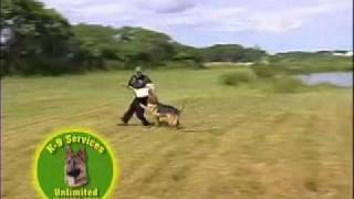 Piazza's Professional Dog Training School/k-9 Services Unlimited Commercial