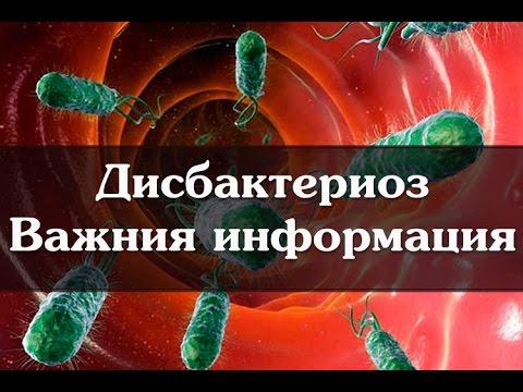 Дисбактериоз Важная информация