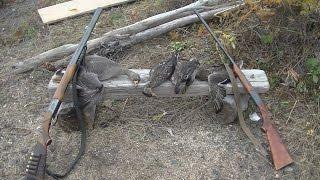 Охота на утку и гуся. Природа Дальнего Востока.