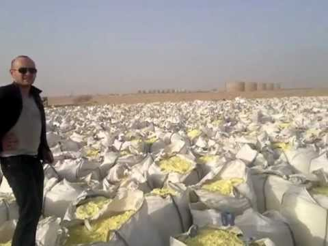 Sulphur Granules and Lumps Loading in Umm qasr