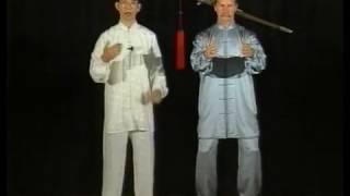 Тайцзы цюань  Комплекс из 24 форм   учебное видео
