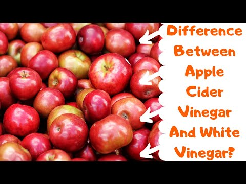 difference-between-apple-cider-vinegar-and-white-vinegar?