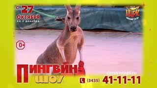 пингвин шоу Нижний Тагил