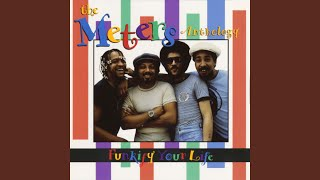 A Message From The Meters (Single Version)