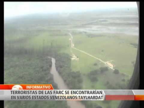 Las FARC estarían en varios estados de Venezuela, según exembajador venezolano ante la ONU