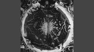 The Hermetic
