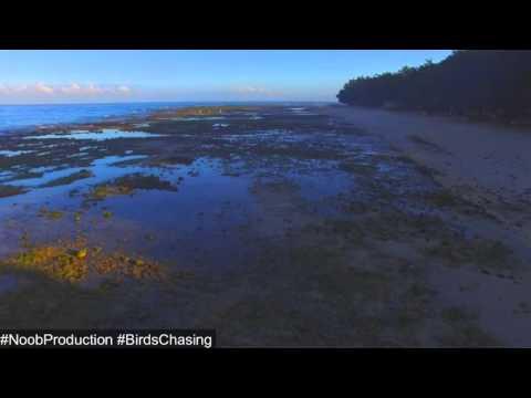 Initao Coastline