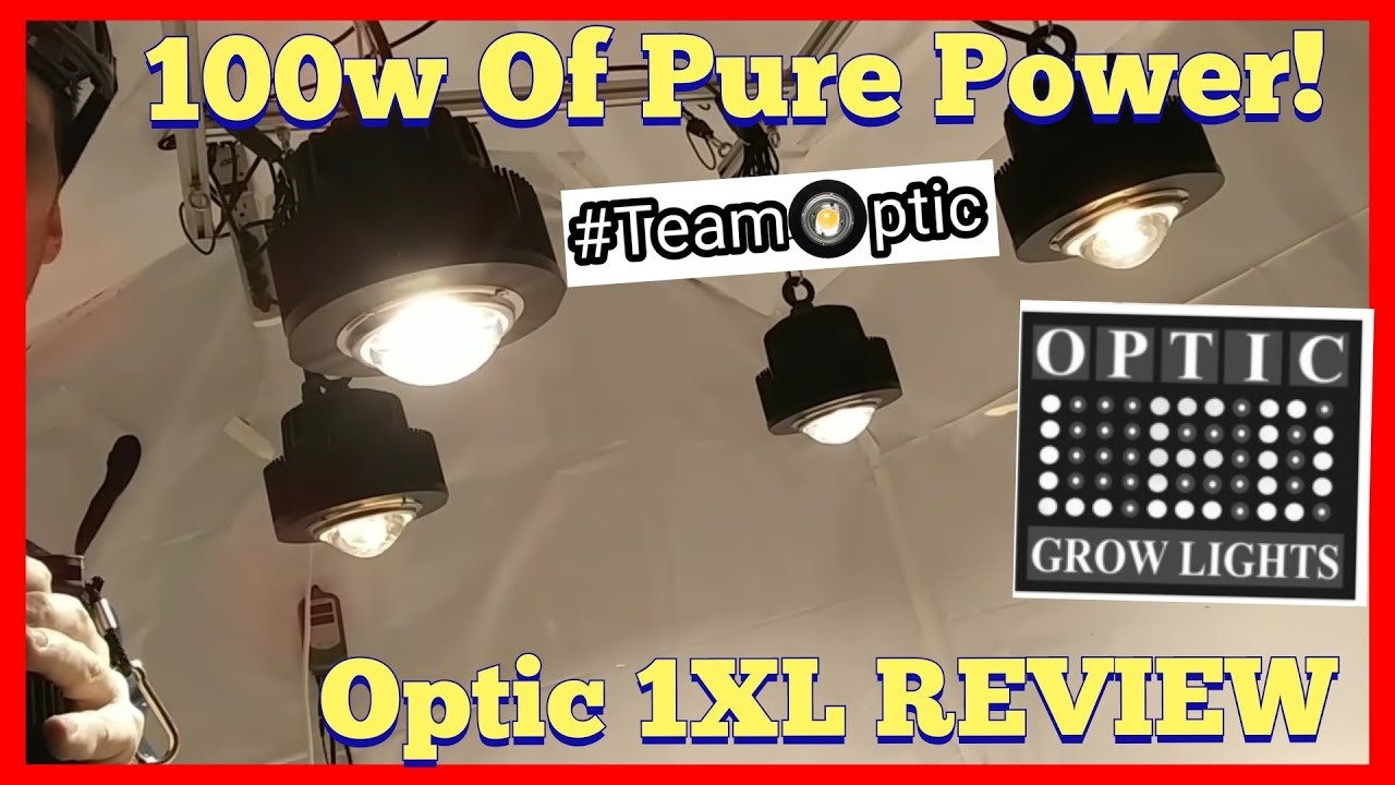 Optic 1 Xl 100w Cob Led Grow Light Review Cree Cxb3590