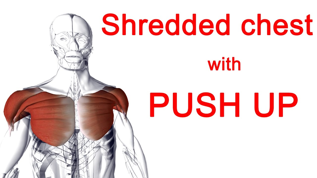 Push up muscles worked - get a shredded chest || Best hands position ...