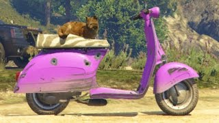 GTA 5 PC Mods Kitty Cat Moped Car Chase Cat Rampage