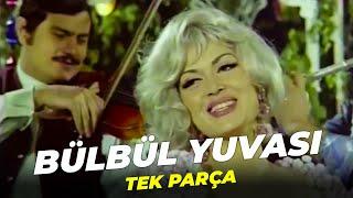 Bülbül Yuvası | Türkan Şoray | Full Film İzle
