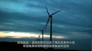 生態短片:高美溼地