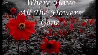 The Searchers: Where Have All The Flowers Gone