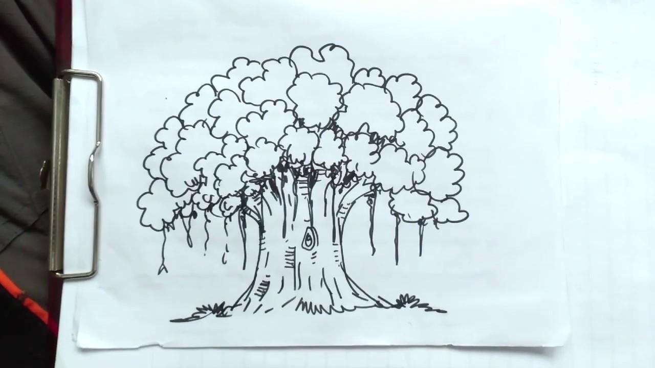 Tutorial Menggambar Pohon Beringin Dengan Bahagia Youtube