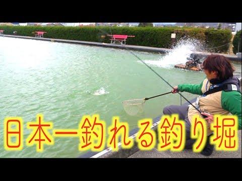 日本一釣れるとウワサの釣り堀にきた!!