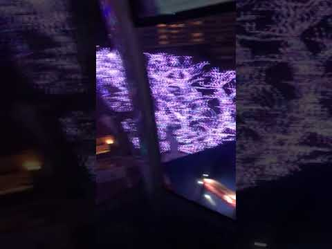 ニコニコ チャネル Yomiuri Land 2017 @ Tokyo illumination 1st time to ride on a cable car