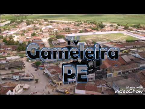 Tv Gameleira-PE
