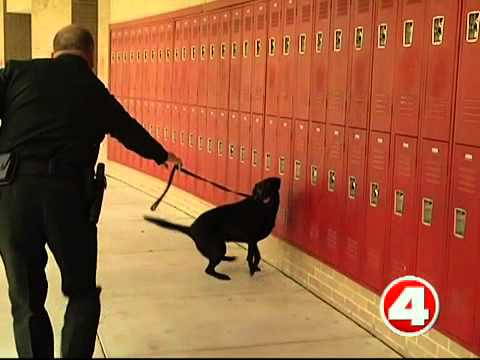 Lee Schools To Use K9 To Sniff Out Drugs, Guns