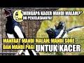 Manfaat Mandi Pagi Mandi Sore Dan Mandi Malam Bagi Kacer Dr Kacer  Mp3 - Mp4 Download