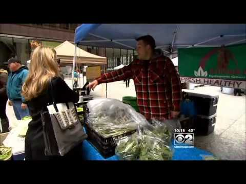 Your Chicago: Farmers Markets