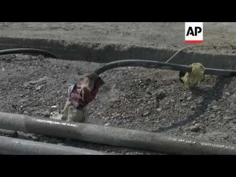 Italian specialists arrive to repair Mosul dam