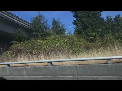 Boeing Everett Washington
