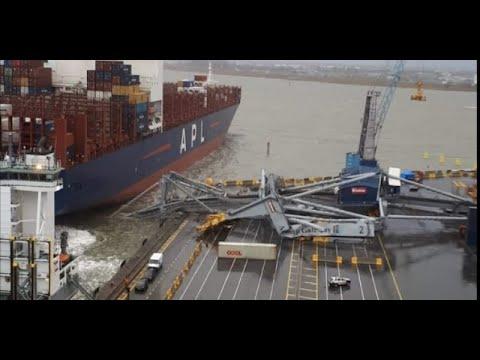 Crane down in Antwerp