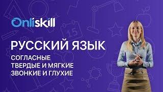 Русский язык 5 класс: Согласные.Твердые и мягкие. Звонкие и глухие.